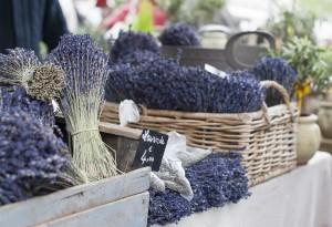 Basket of Lavender, Provence market