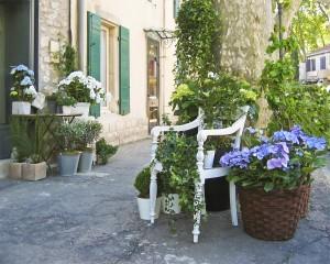 Florist, St.Remy de Provence, France